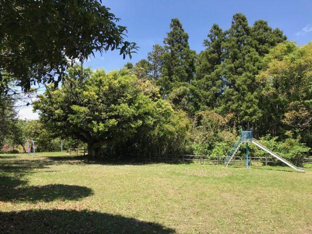 万木城跡公園