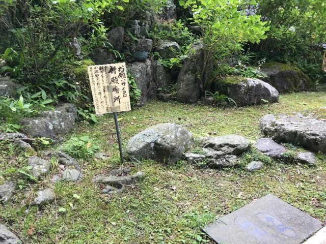 麻綿原高原のアジサイ寺(妙法生寺)