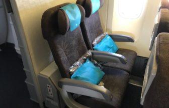 ガルーダインドネシア航空の52C