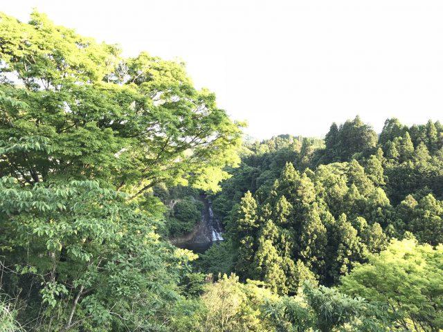 養老渓谷の展望台