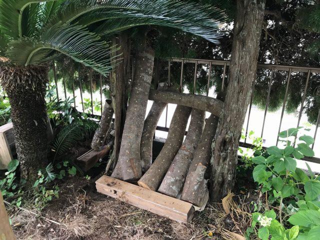 しいたけ原木栽培